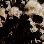 La Belgique va restituer des crânes de congolais gardés depuis l'époque coloniale à la RDC (CongoForum)