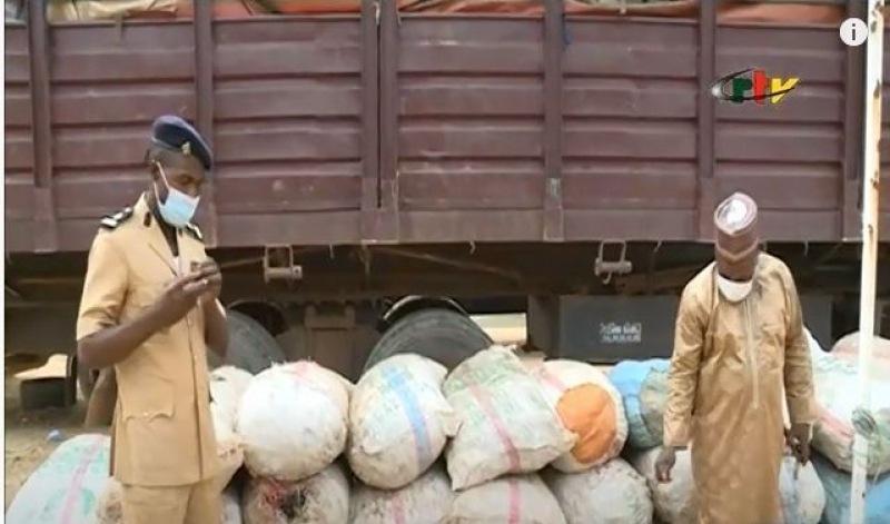 Contrebande : Quatre tonnes d'écailles de pangolin en provenance de la RDC saisies à Gaschiga au Nord-Cameroun (CongoForum)
