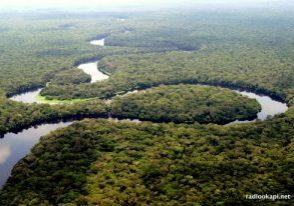 Equateur-bossen